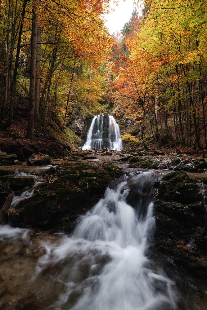 Autumn Season by Marvin Schweer