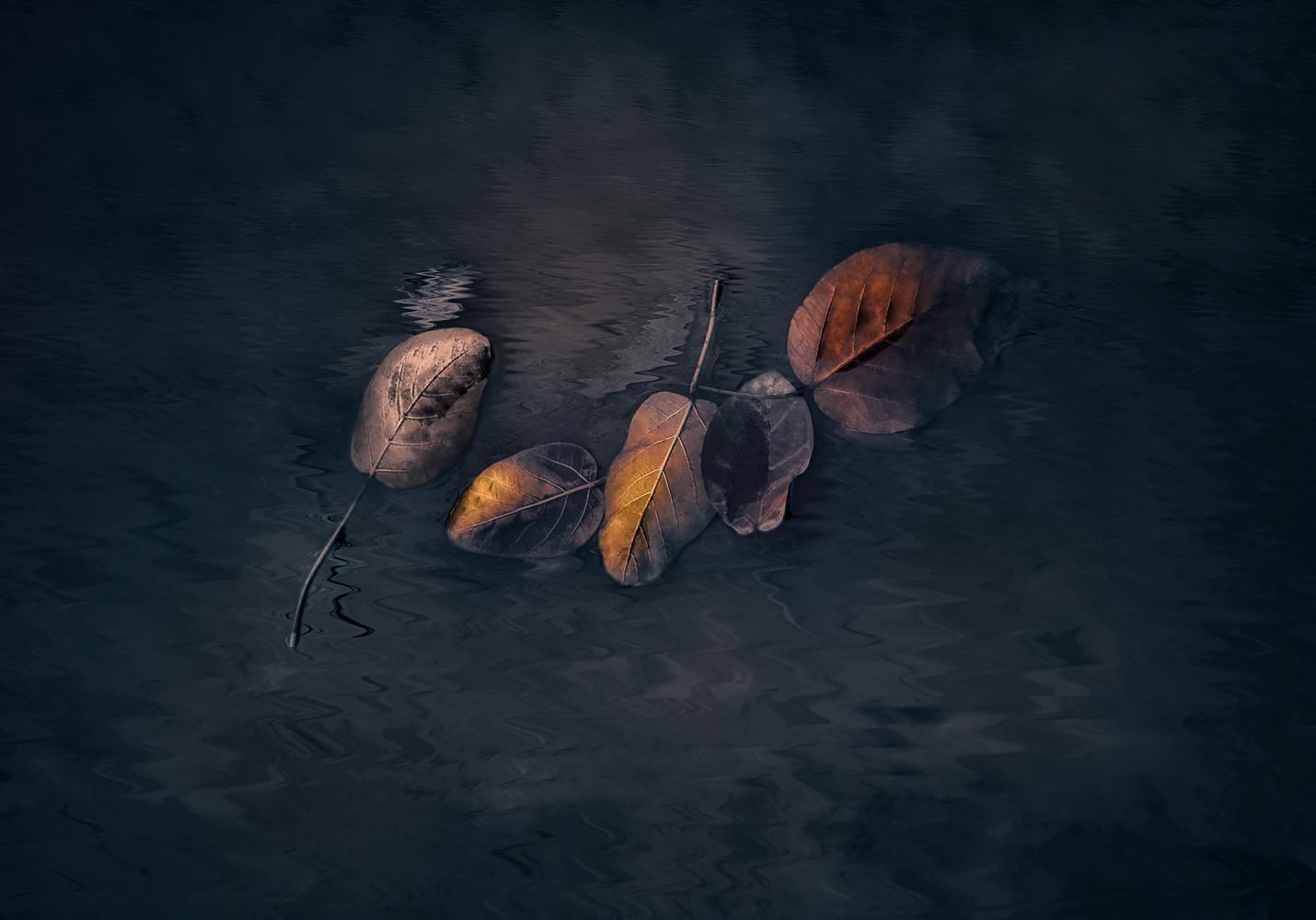 Grace by Yasmine Hassan