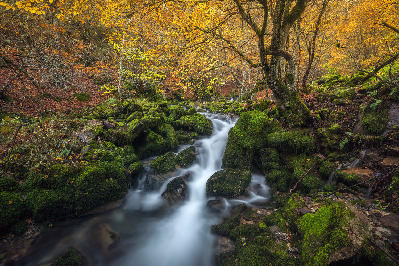 Autumn day by alfonso maseda varela