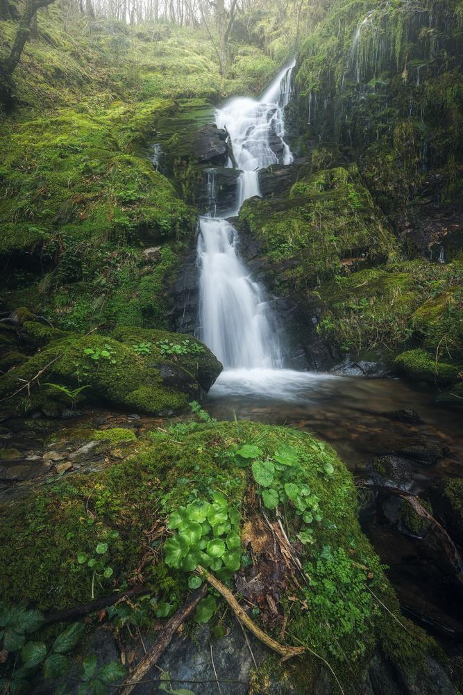 the hidden waterfall by alfonso maseda varela