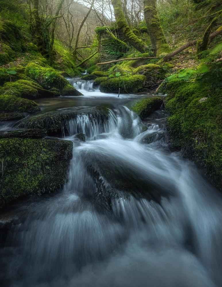 """""""the water way"""" by alfonso maseda varela"""