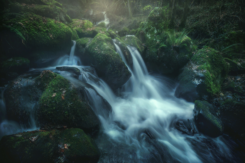 The river of life by alfonso maseda varela