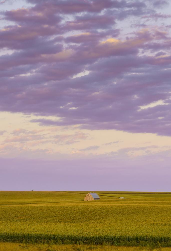 Heartland by Shane Garner