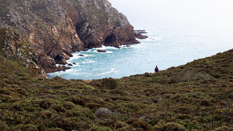 Seaside Hike by Matthew Smith