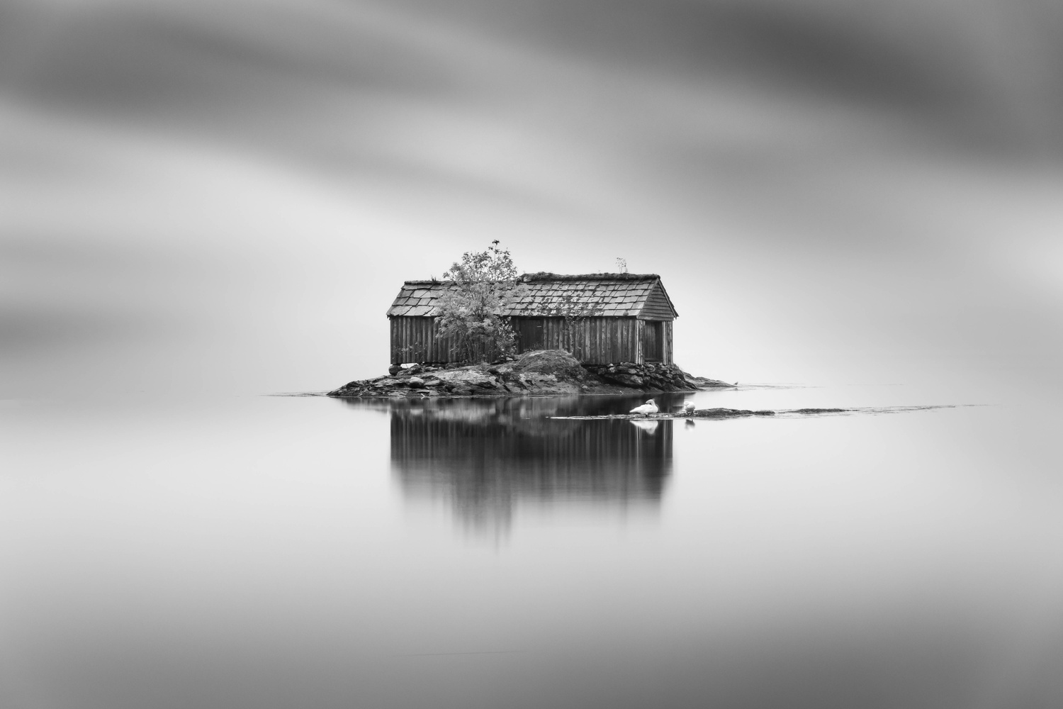 Shed in the lake by Sem Wijnhoven