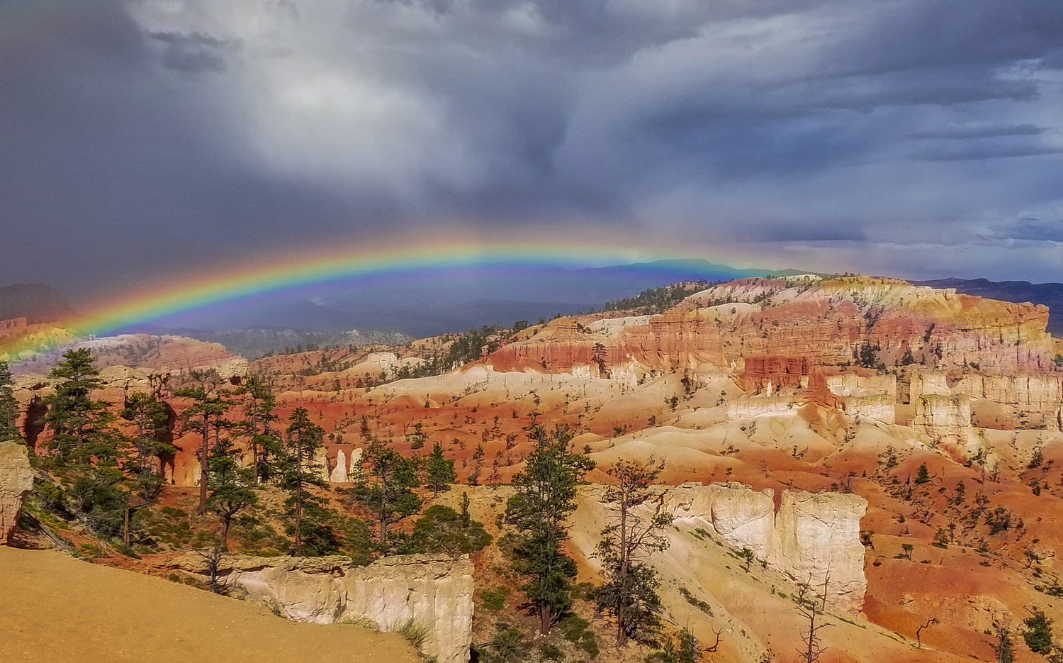 Untitled Rainbow after hail storm in Bryce by John Nicholson
