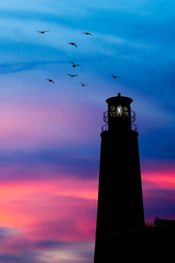 Sunset Light by Jon Lloyd Jr
