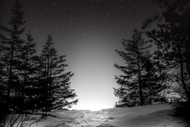 A Night Dream by Easton Plourde