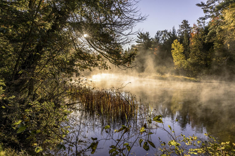 Mason Mist by Derek Bradley
