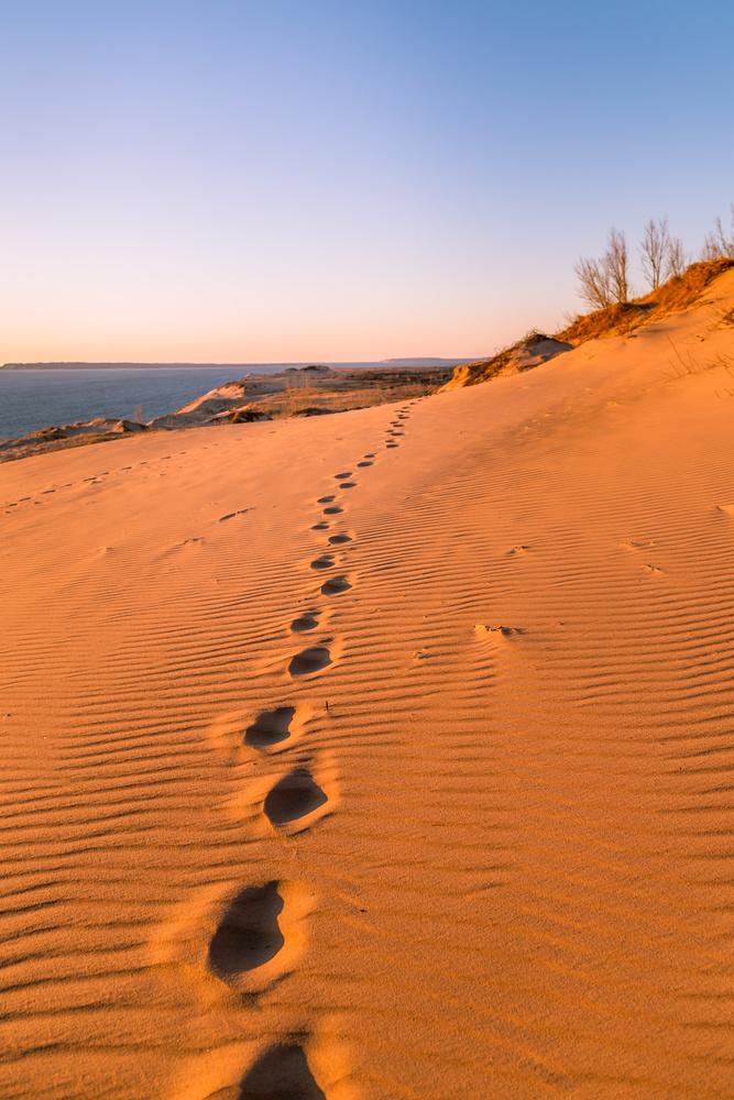 I Walk Alone by Derek Bradley