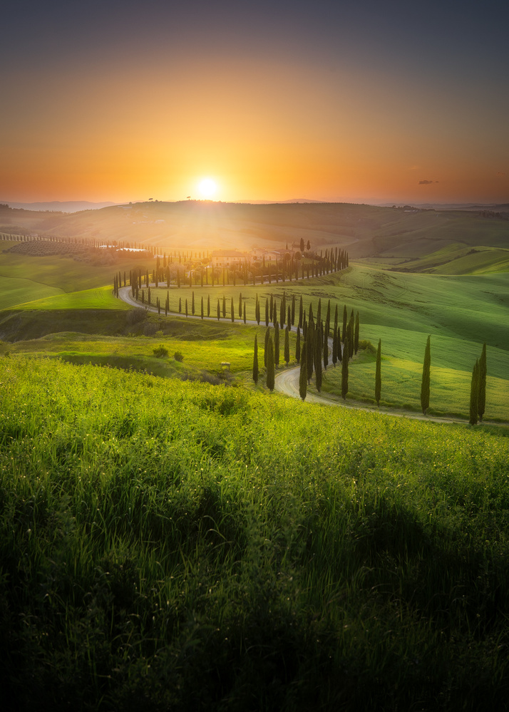 Val d´orcia  - Italy by Kim Jenssen