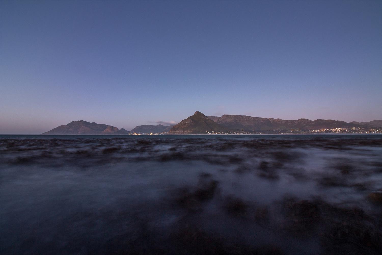 Swaying seaweed by Tamarac Searll