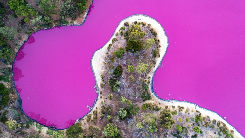 Pink Lake by Peter Virag