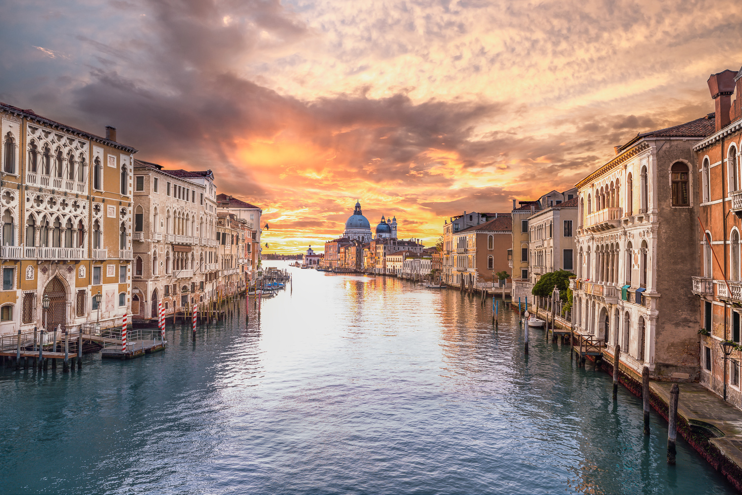 Good Morning Venice by Philip Young