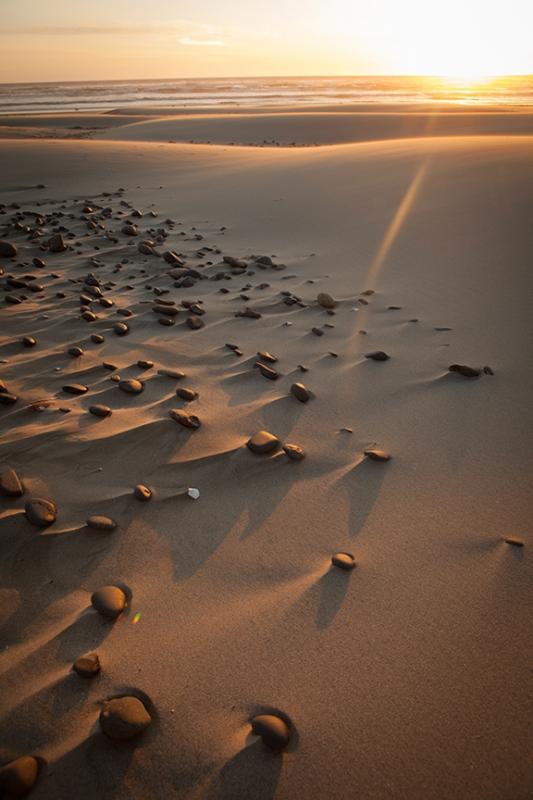 Oregon Dunes by Alan Lemire