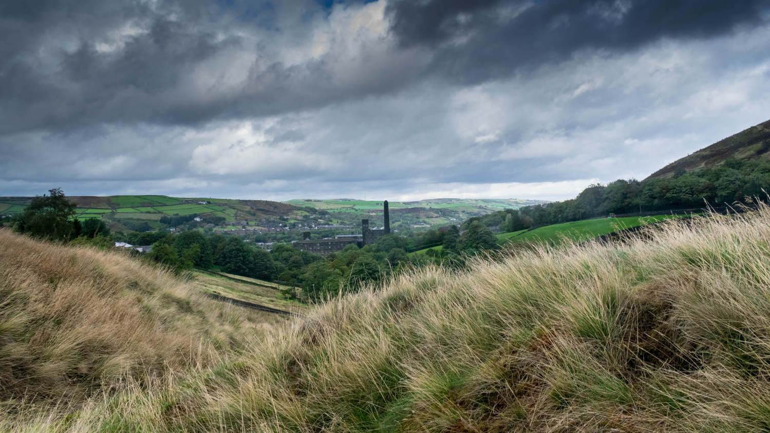 Gloom on the Moors by Steven Clough