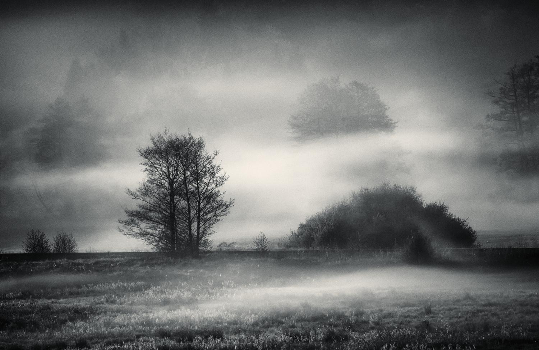 The field of mystic dreams by Mark Seawell