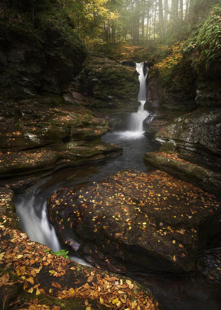Adam's Falls by joseph cole