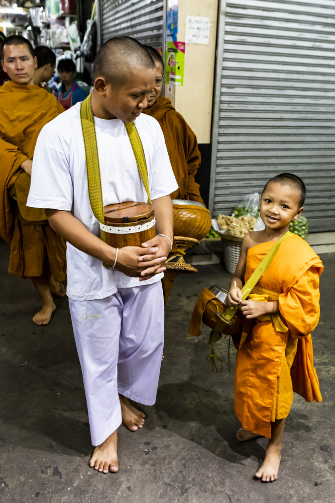 baby monk by Stephen Scully