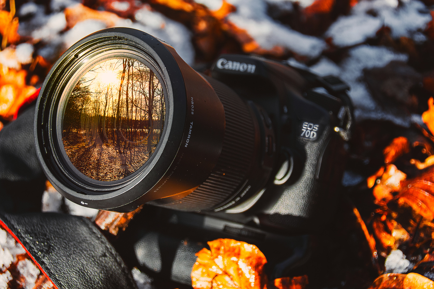 Canon 70d by nicky fredriksson