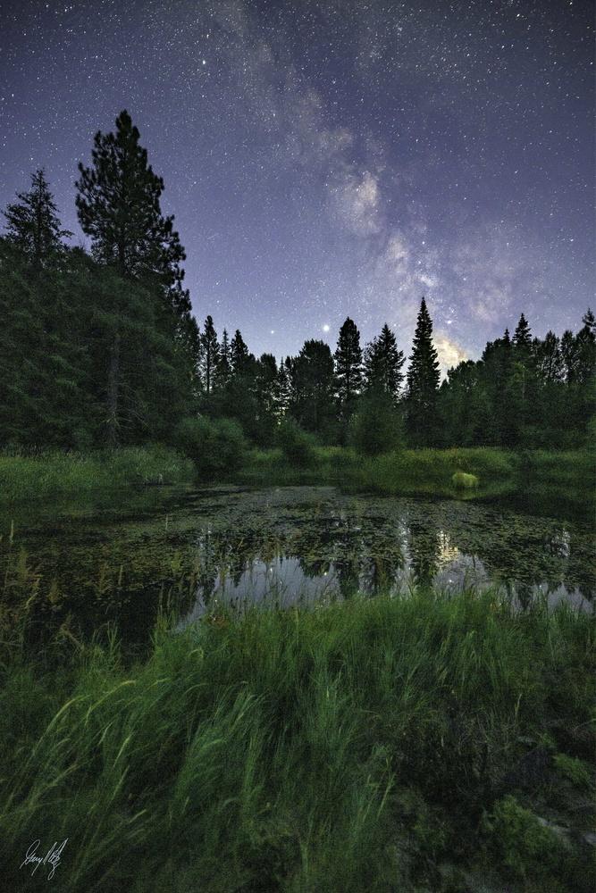 Waldon Pond by Gary Peltz
