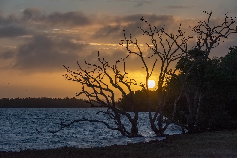 Everglades Sunset by Robert Barr