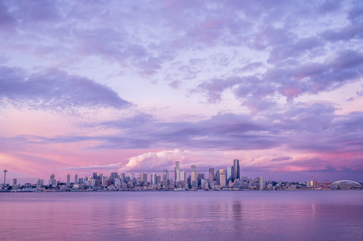 Alki's finest by marcus brown