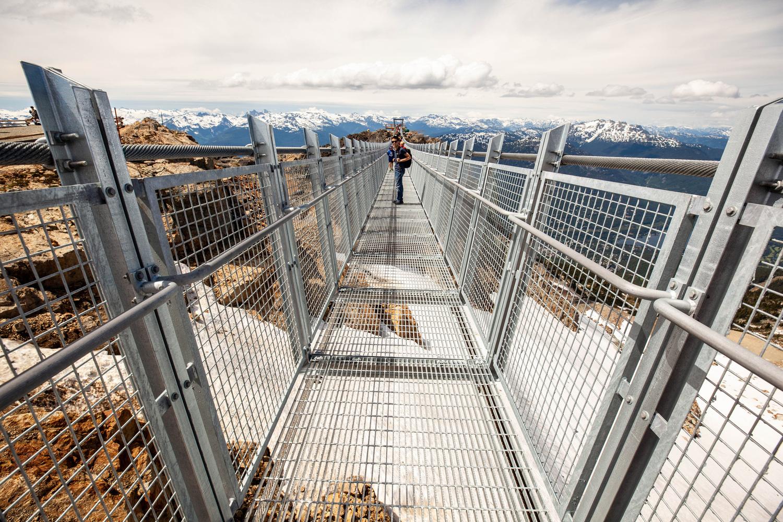 Whistler Peak Suspension Bridge by fiona parker