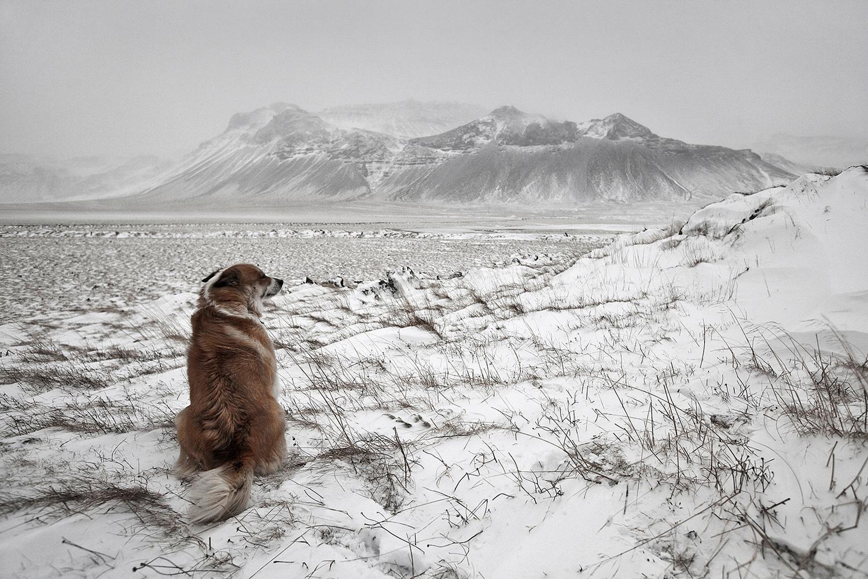 Snowstorm by Bragi Ingibergsson - BRIN