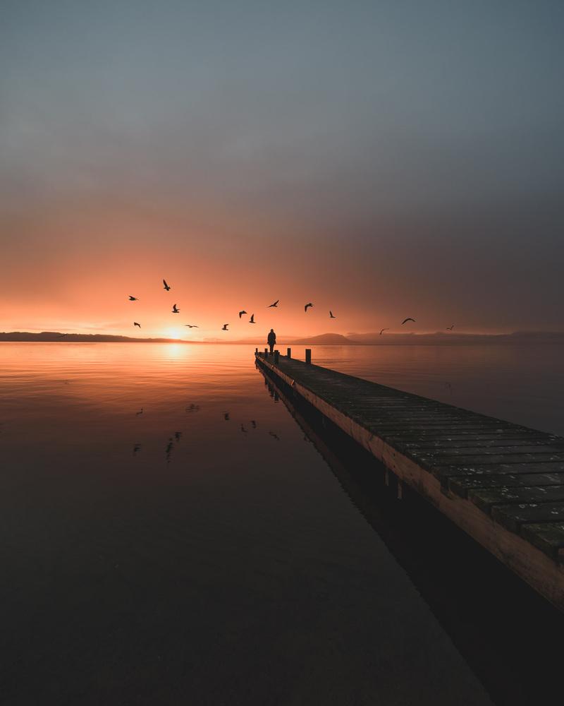Early bird by Ryan Hill