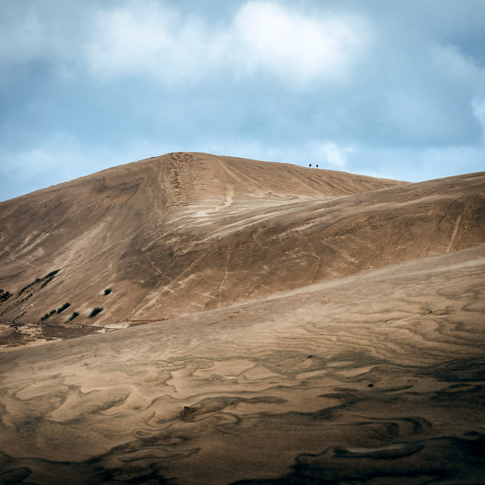 Sand dunes of new zealand by Ryan Hill