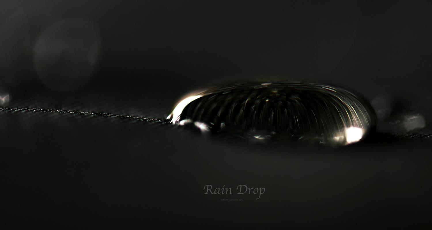Rain Drop by Manny Gonzales