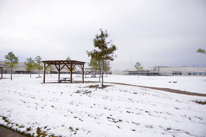 Katy, Texas - Snow by Manny Gonzales