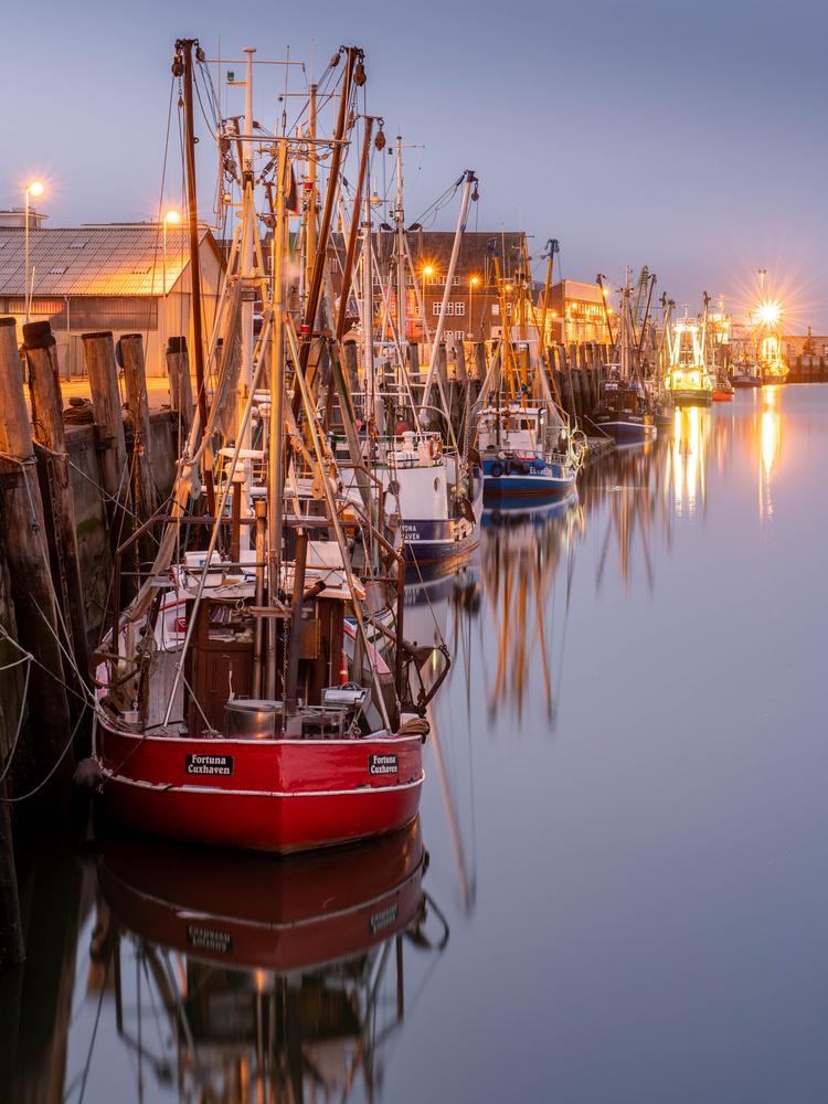 North Sea Trawlers by Timo Tavio