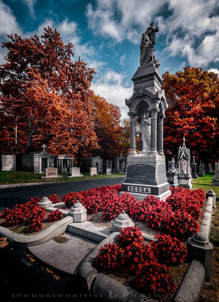 St. Michael Cemetery, Boston by Thomas Logan