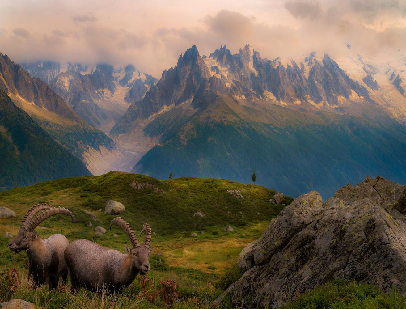 The Mountain Experience by Corin Vilanek