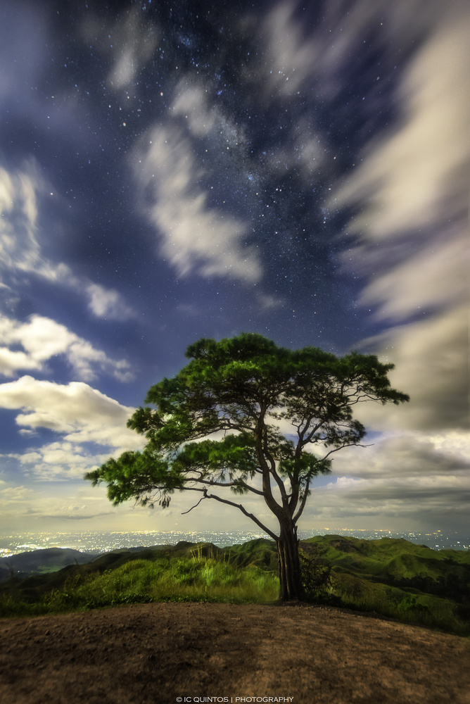 Stars Above the Lover's Tree by Ivann Quintos