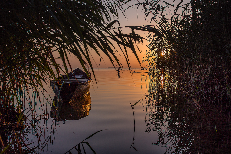 Sinlence of morning by Iulian Rotaru