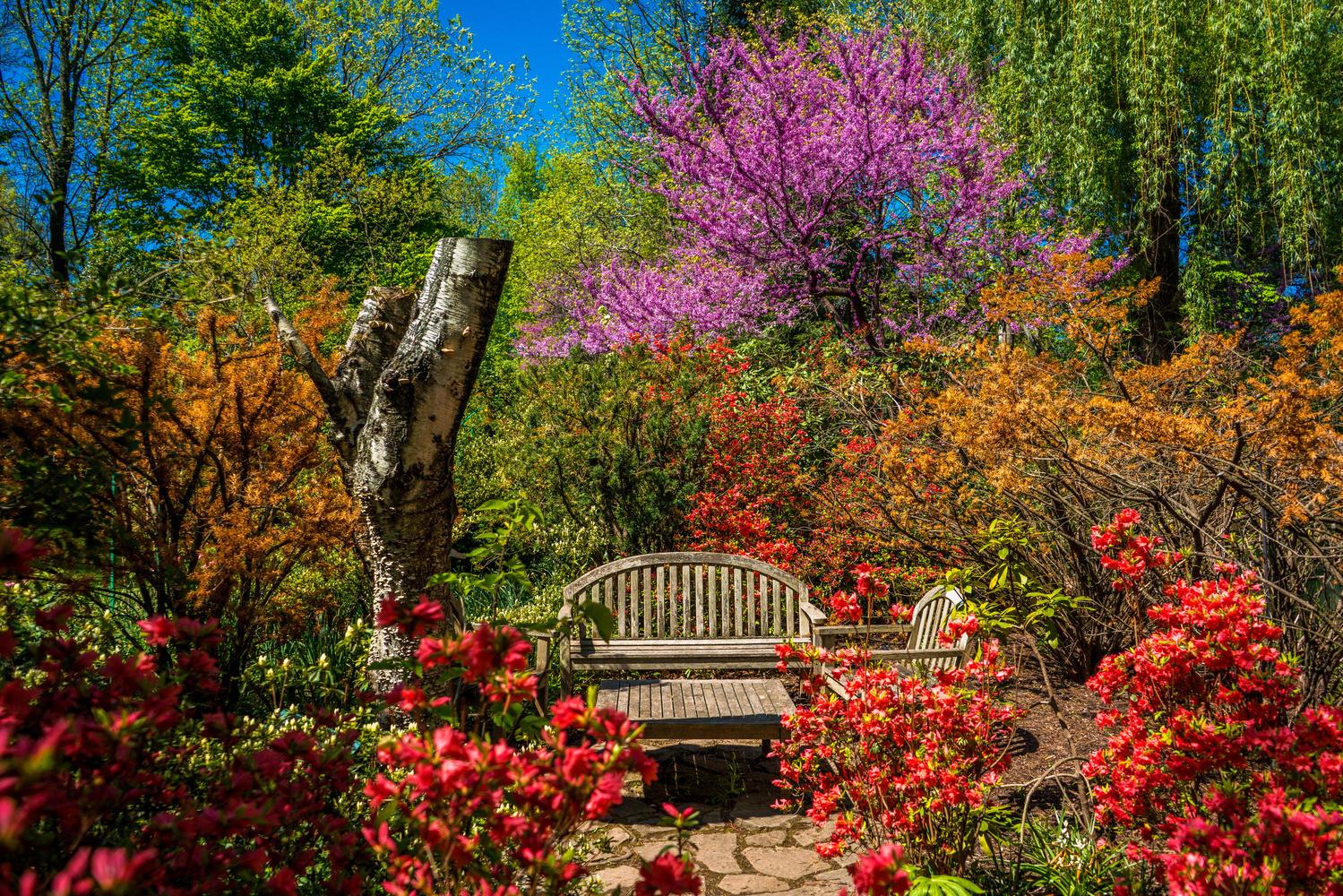 Sculpture Garden Bench by Luis Santana