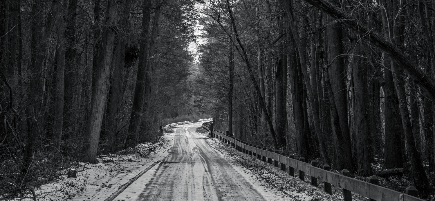 Loney Country Road by Luis Santana