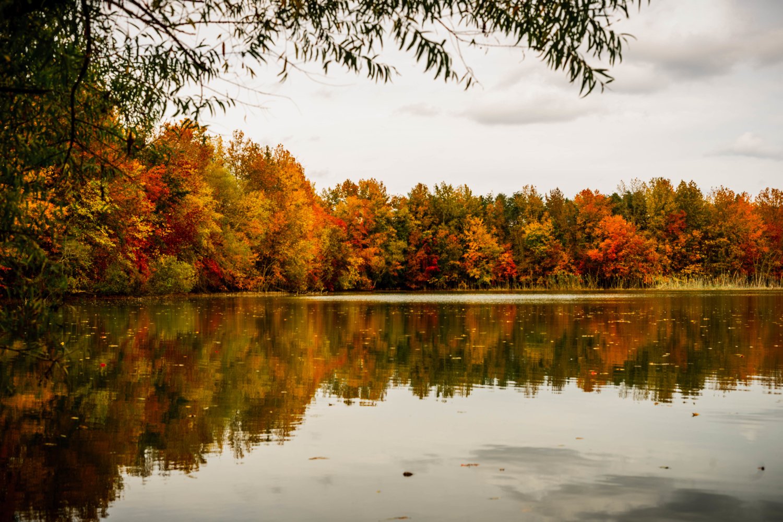 October Autumn by Luis Santana