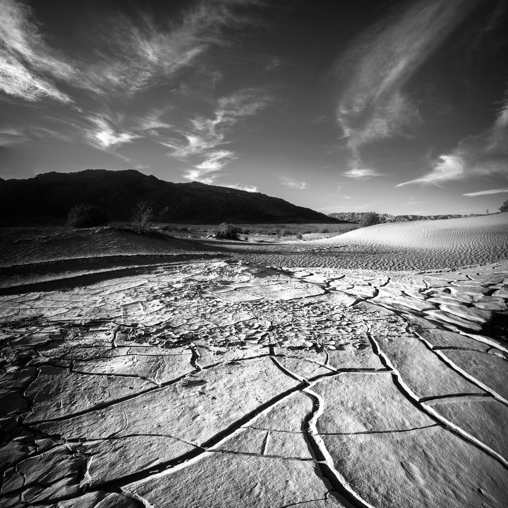 Death Valley Cracks by Daniel Wishard