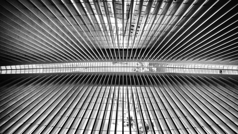 Oculus NYC by Daniel Wishard
