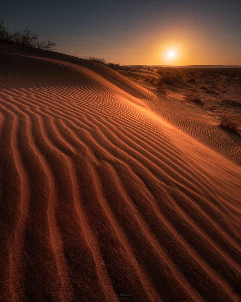 Solaris by Lior Akunis
