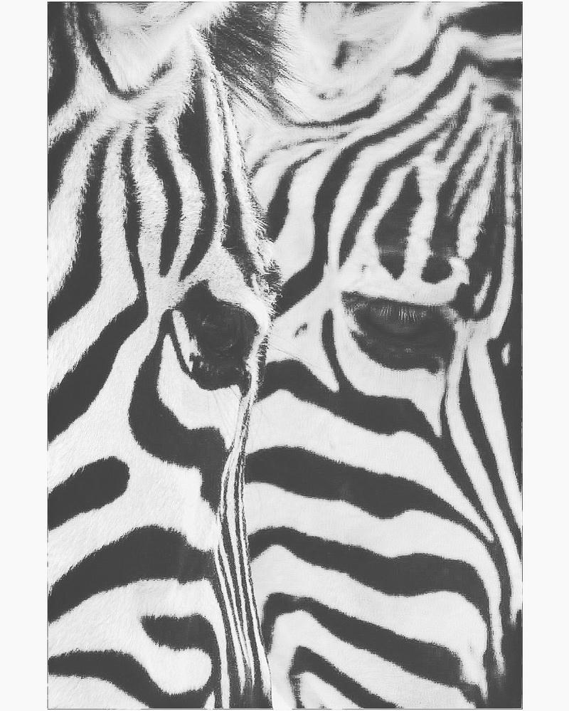 Stripes by Paulo Henrique Radaic