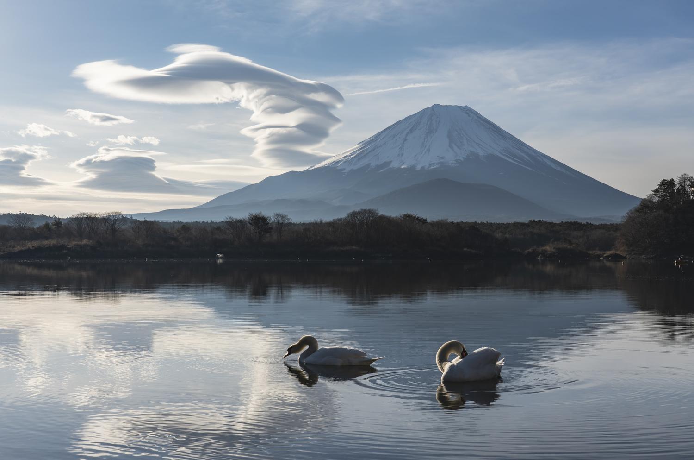 The lake of swan by kousuke kitajima