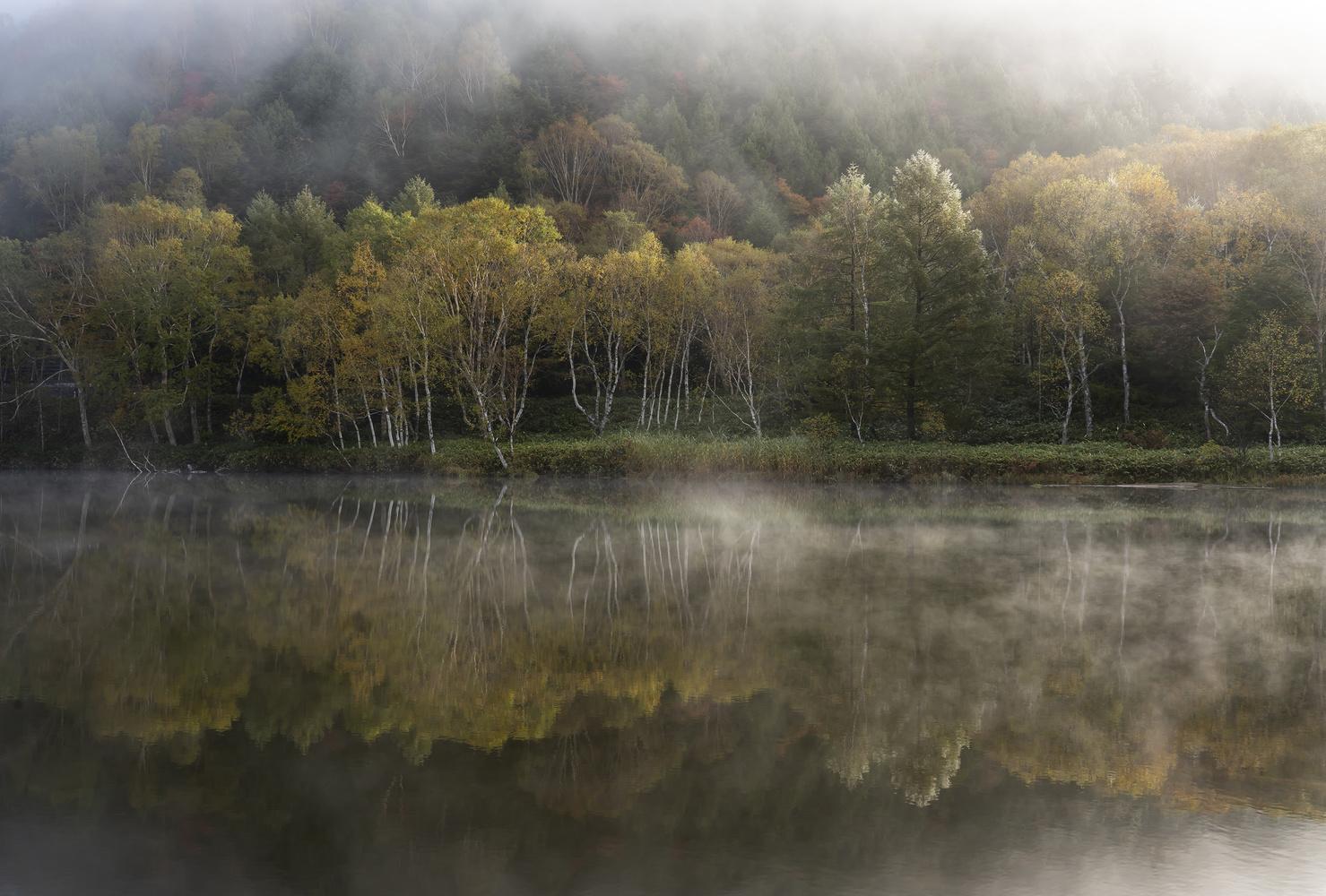 Misty scenery by kousuke kitajima