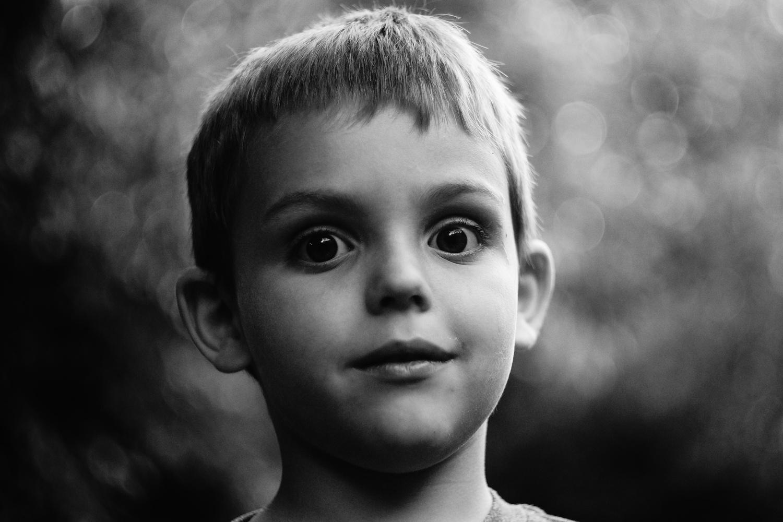 portrait of boy by David Widder