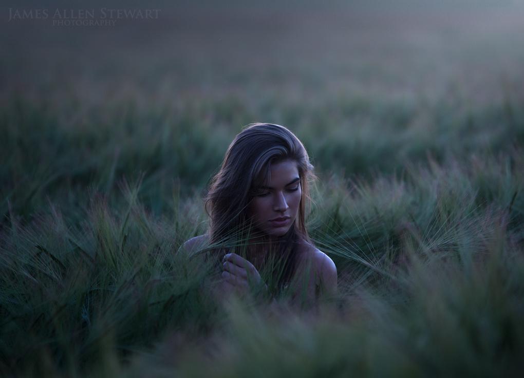 Dawn by James Allen Stewart