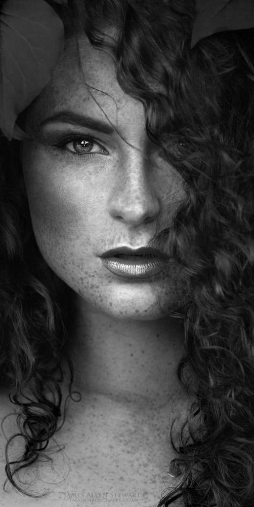 Celine by James Allen Stewart